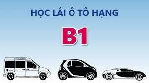 Học bằng lái xe ô tô B1